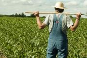 Ημερίδες Αγροτικής Ανάπτυξης