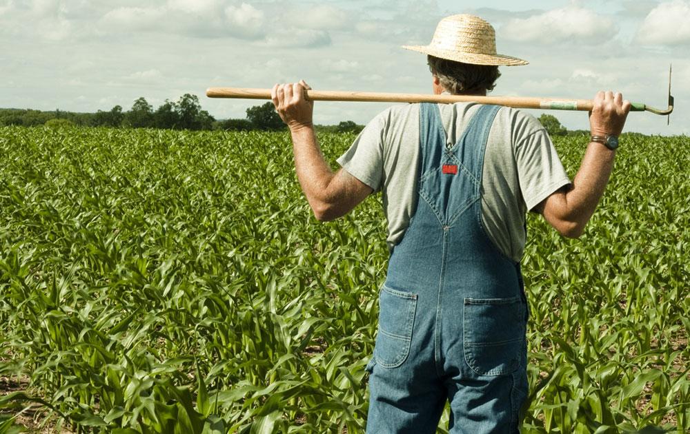 Ημερίδες για τις γεωργικές εκμεταλλεύσεις