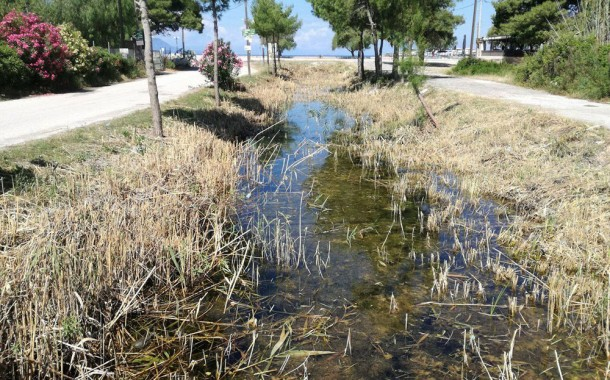 Συνεχίζονται οι ψεκασμοί για την καταπολέμηση των κουνουπιών στην Δυτική Αττική