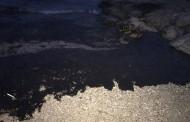 H Περιφέρεια Αττικής για την οικολογική καταστροφή στον Σαρωνικό