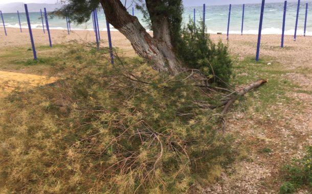 Επικίνδυνοι άνεμοι σε Μέγαρα και παραλιακές περιοχές