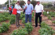 Πείραμα πατάτας με γεωπόνους ερευνητές από όλο τον κόσμο στον κάμπο των Μεγάρων