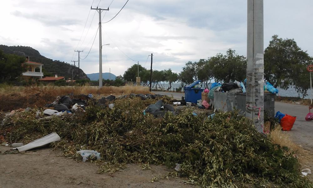 Βουνά σκουπιδιών στο Πευκογυάλι