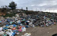 Kλεάνθης Βαρελάς: Ένα ακόμα περιβαλλοντικό έγκλημα από την διοίκηση του Δήμου Μεγαρέων