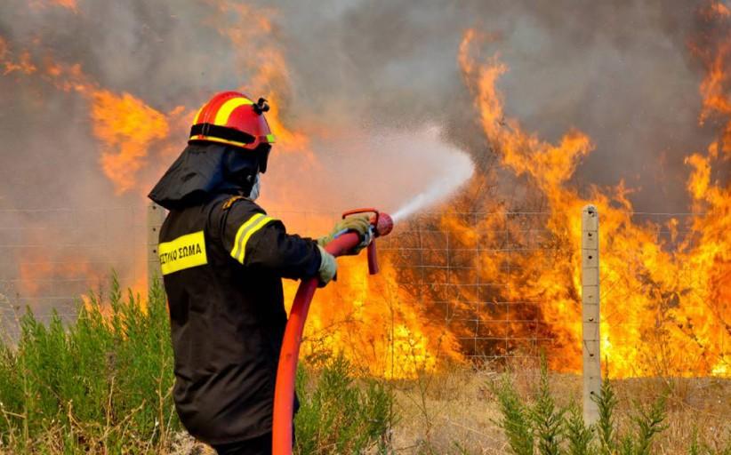 Τρία μέτωπα πυρκαγιάς στη Μεγαρίδα ταυτόχρονα