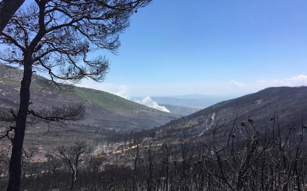 Εικόνες καταστροφής στο όρος Πατέρας