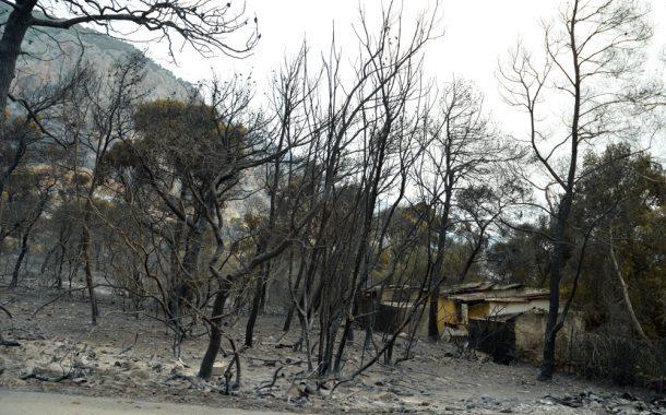 Πιθανές συνέπειες της πυρκαγιάς στη δημόσια υγεία