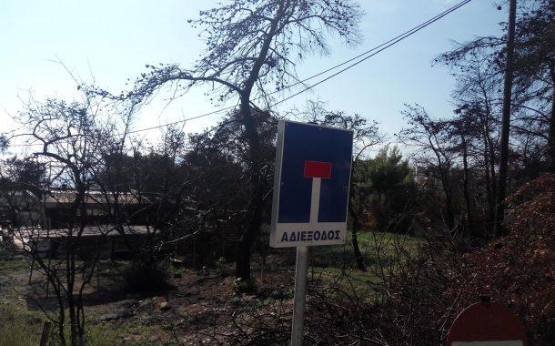 Να κοπούν τα καμμένα δένδρα στα Γεράνεια που ξεριζώθηκαν από τον «Γηρυόνη» ζητά ο Γρ. Σταμούλης
