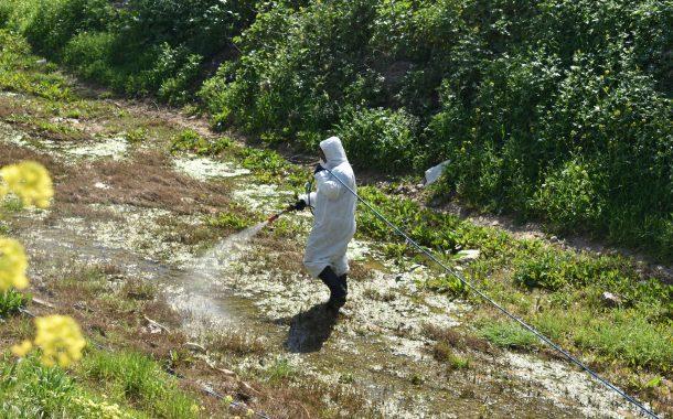 Ψεκασμοί για την καταπολέμηση των κουνουπιώναπό την Περιφερειακή Ενότητα Δυτικής Αττικής