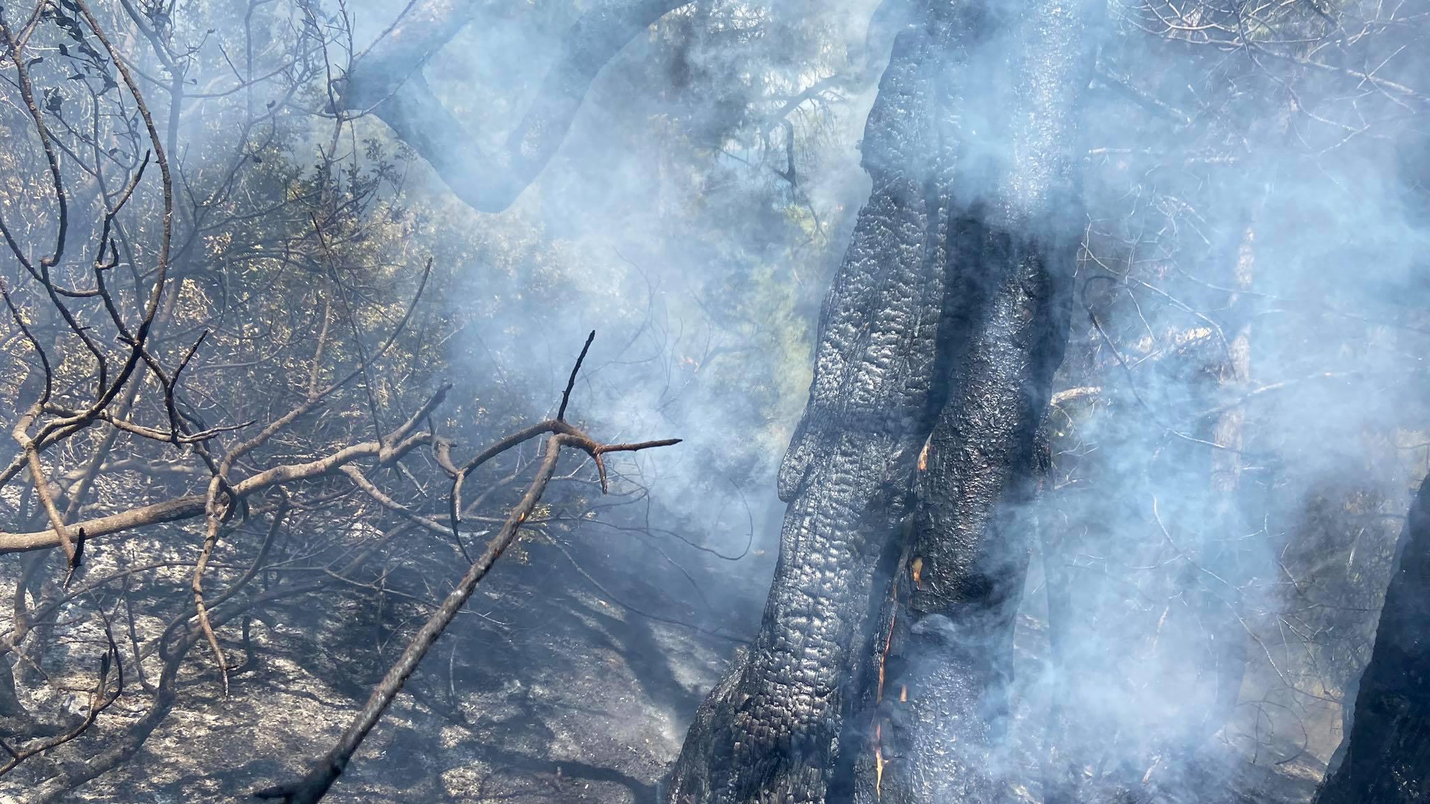 Πρόλαβαν φωτιά στο Αλεποχώρι